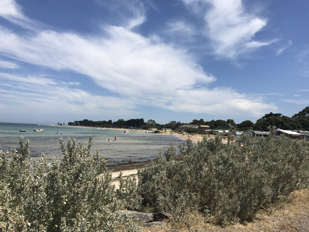 Indented_Head